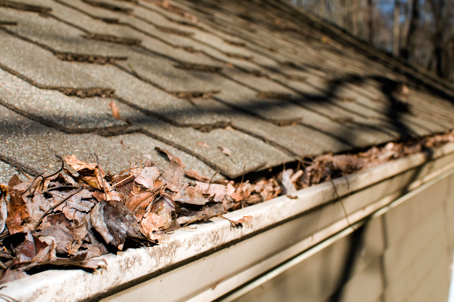 Gutter Cleaning Camelot Pressure Washing
