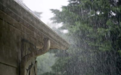 Clean Gutters Equal a Healthy Home